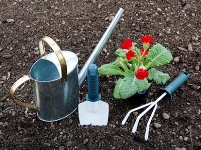 Accesorios de Cultivo