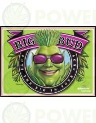 Big Bud (Advanced Nutrients) Abono de floración para Cannabis.