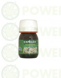 Expeléx 30ml Trabe Insecticida Natural