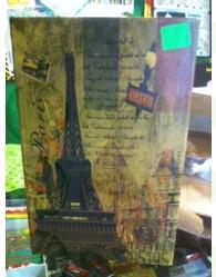Libro Ocultación Paris