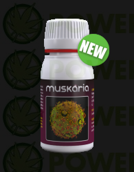 Muskaria (Agrobacterias) Fungicida
