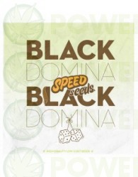 Black Domina x Black Domina 60 unds (Speed Seeds) Semilla Feminizada Marihuana