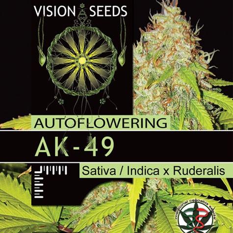 AK-49 Auto Vision Seeds  2