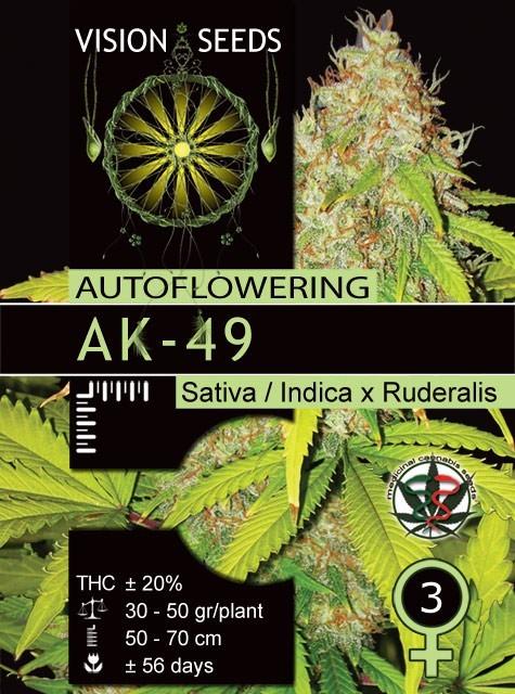 AK-49 Auto Vision Seeds  1