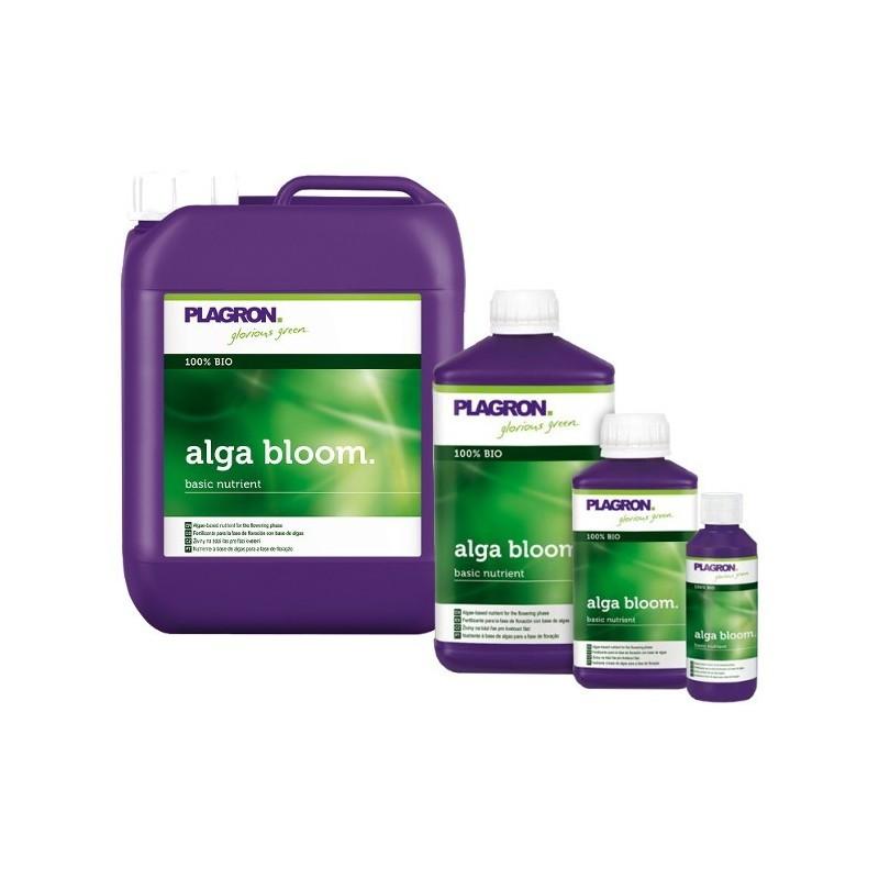 Alga Bloom Plagron 1