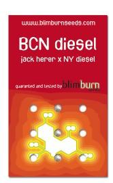 BCN Diesel (Blim Burn Seeds) 0