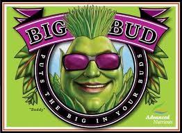 Big Bud (Advanced Nutrients) Abono de floración para Cannabis. 0