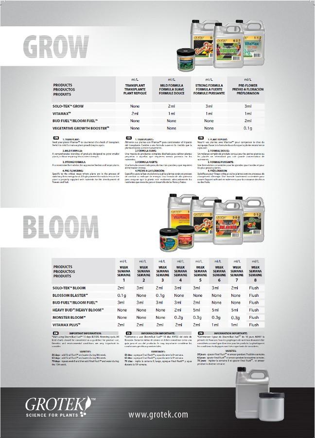Blossom Blaster (grotek) 2
