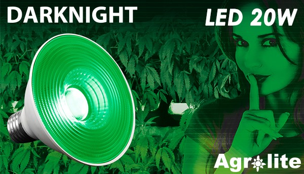 Bombilla Dark Night Led 20w Luz Verde (Agrolite) 0