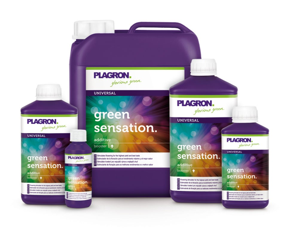 Green Sensation (Plagron) 1