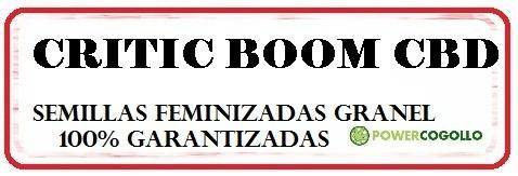 citric-boom-cbd-feminizada-granel 0
