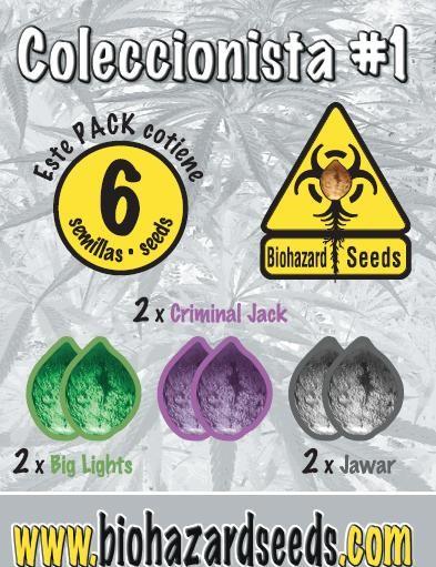 Biohazard Seeds Semilla marihuana feminizada Coleccionista #1 3