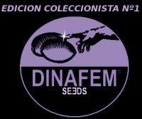 Edición Coleccionista #1 (Dinafem) 6 Semillas Feminizadas 0