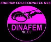 Edición Coleccionista #5 (Dinafem) 6 Semillas Feminizadas 0