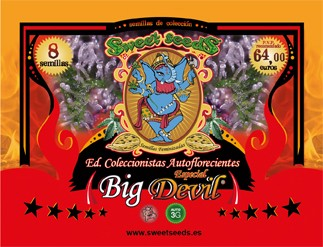 Ed. Especial Autoflorecientes Big Devil 0