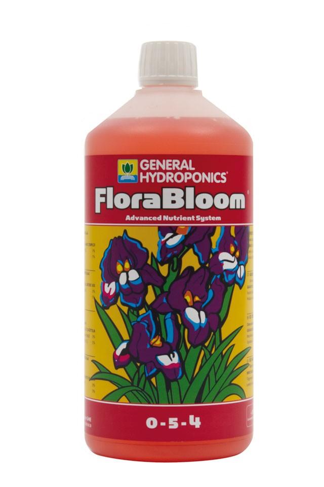 Flora Bloom (GHE) 1