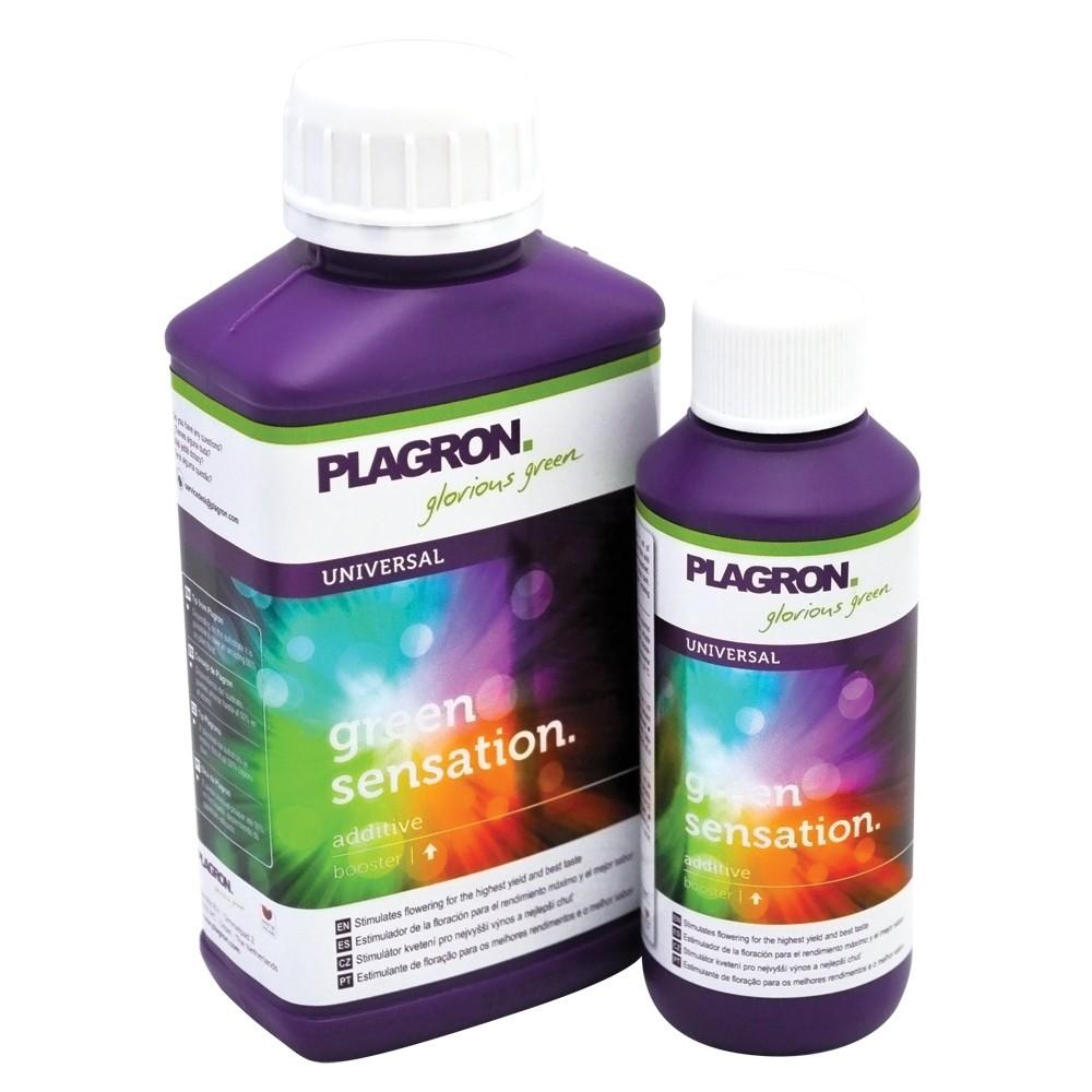 Green Sensation (Plagron) 0