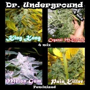 Killer Mix 4 (Dr. Underground Seeds) Pack 4 Semillas Feminizadas Cannabis 0
