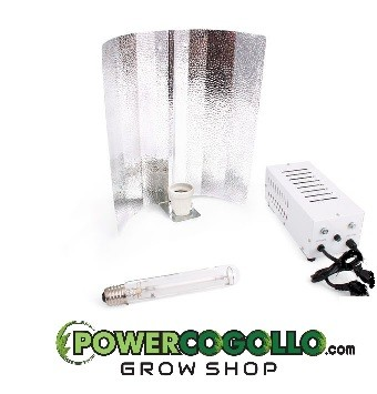 KIT MAGNETO 400W GREEN FORCE STUCO 0