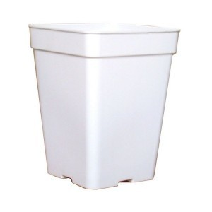 Maceta Blanca Cuadrada de 11 litros para Semillas Autoflorecientes exterior 0
