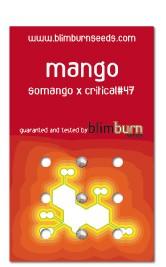 Mango (Blim Burn Seeds) Semilla feminizada Marihuana  0