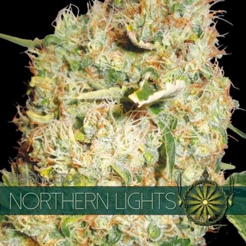 Northern Lights Vision Seeds 2
