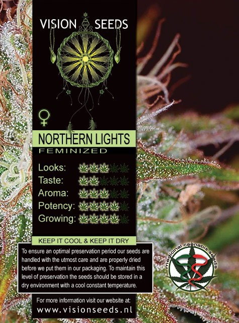 Northern Lights Auto Vision Seeds 1