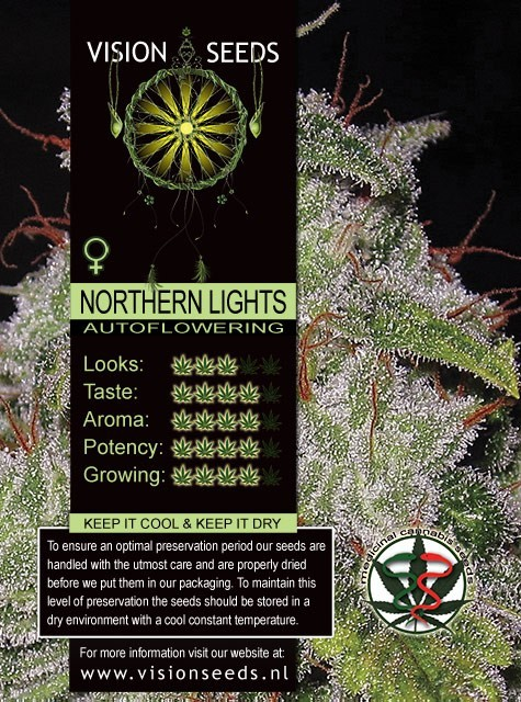 Northern Lights Auto Vision Seeds 2