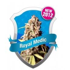 Royal Medic CBD Feminizada (Royal Queen Seeds) 0