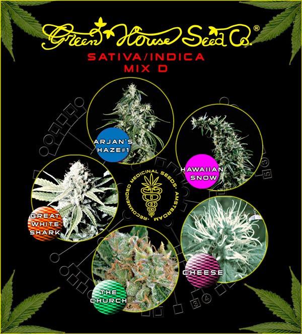 Sativa/Indica mix D (Green House Seeds) 1