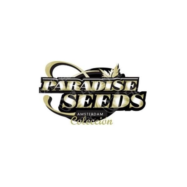 Sativa Champions Pack (Paradise Seeds) 1