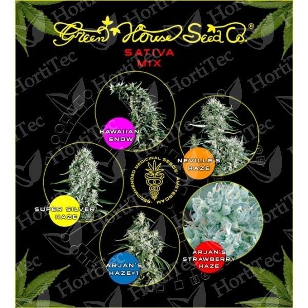 Sativa mix (Green House Seeds) 1 SUPER SILVER HAZE + 1 ARJAN'S STRAWBERRY HAZE + 1 ARJAN'S HAZE #1 + 1 NEVILLE'S HAZE + 1 HAWAIIAN SNOW La Revolución de las semillas ha llegado : SEMILLAS FEMINIZADAS DE COLORES de Green House Seeds.  Green House Seeds pre 1