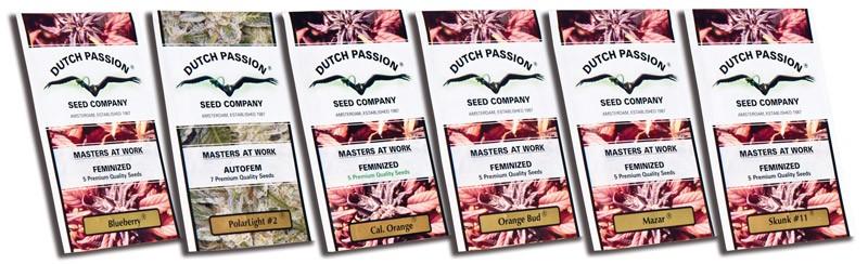 Ultra Skunk Feminizada (Dutch Passion Seeds) 1