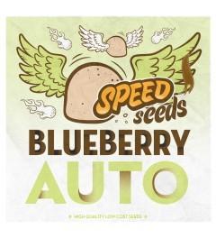 Blueberry Auto 30 unds (Speed Seeds) Semilla Feminizada Autofloreciente Cannabis 0