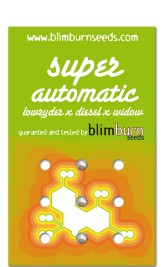 Super Automatic 3 Semillas (Blim Burn Seeds) 0