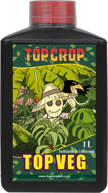 top veg, crecimiento cannabis 0