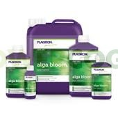 Alga Bloom Plagron 0