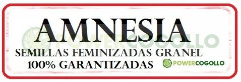 Amnesia Feminizada 100% Granel 0