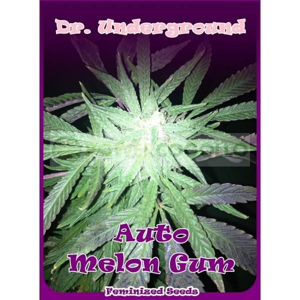 Auto Melon Gum (Dr. UnderGround)  0