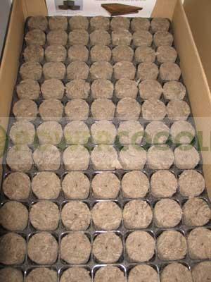Bandeja SpeedGrow 84 Alveolos Agrawool 1