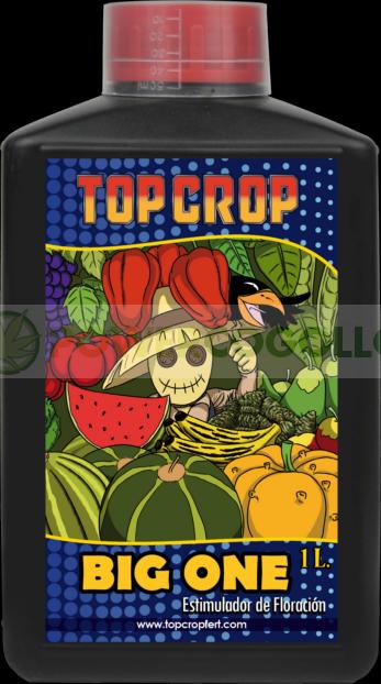 Big One estimulador de floración de Top Crop 0