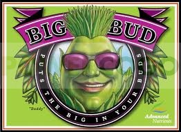 Big Bud (Advanced Nutrients) Abono de floración para Cannabis. 0