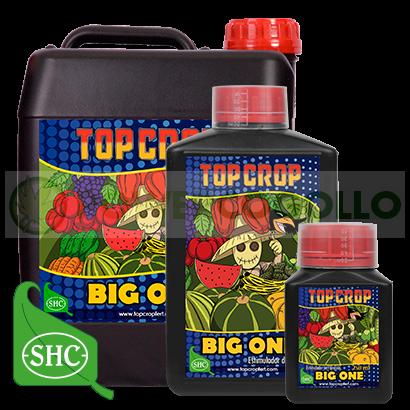 Big One estimulador de floración de Top Crop 1