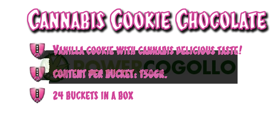 CannaCookie Chocolate Galletas con Marihuana 1
