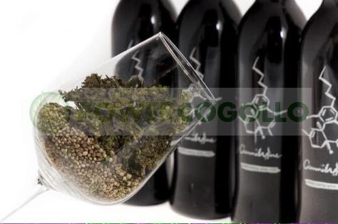 CannaWine Vino con CBD 500ml 4