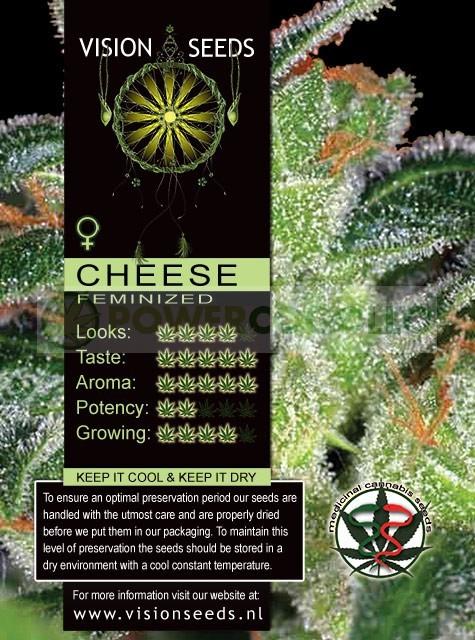 Cheese (Vision Seeds) Semilla Feminizada 1