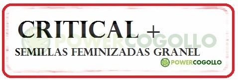 Critical + Feminizada 100% Granel 0