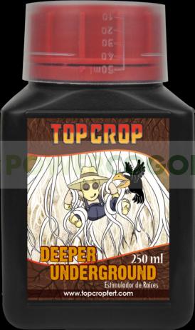 Deeper Underground (Top Crop) 1