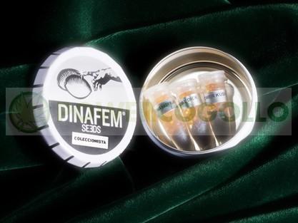 Semillas Edición coleccionista #12 de Dinafem 0