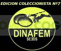 Edición Coleccionista #7 (Dinafem) 6 Semillas Feminizadas Cannabis 0